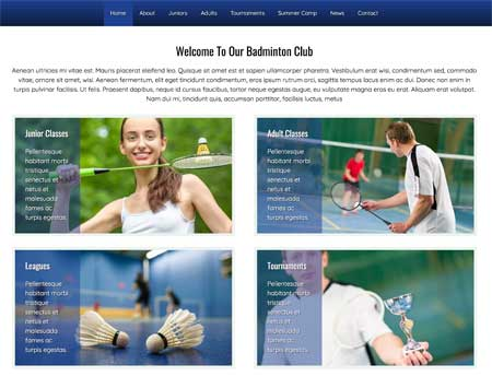 Badminton WordPress Theme - Highlighted services