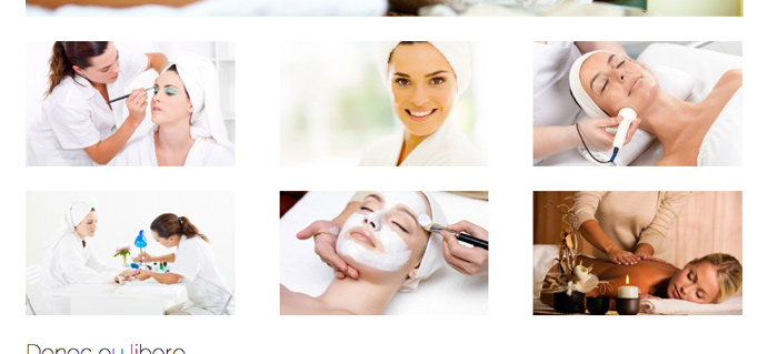 Beauty Spa WordPress Theme - Beautiful gallery