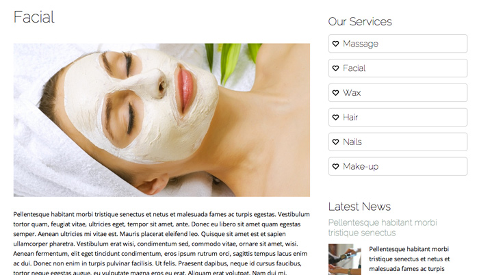 Beauty Spa WordPress Theme - Service details