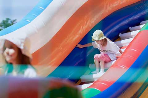 Bouncy Castle WordPress Theme - For inflatable experts