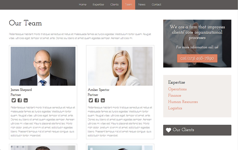 Business Consultant WordPress Theme - Stylish biography page