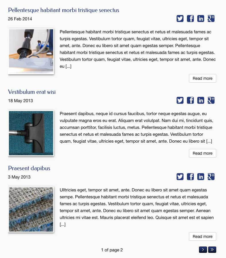 Carpet Cleaning WordPress Theme - cleaning articles