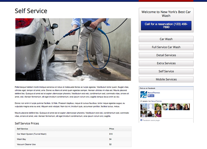 Car Wash WordPress Theme - Beautiful service details