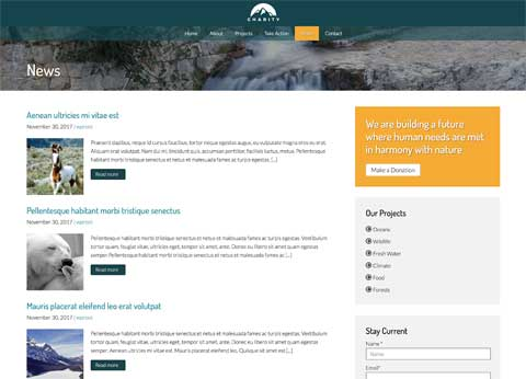 Charity WordPress Theme - Classic blog integrated