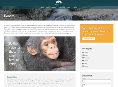 Charity WordPress Theme - Accept Donations