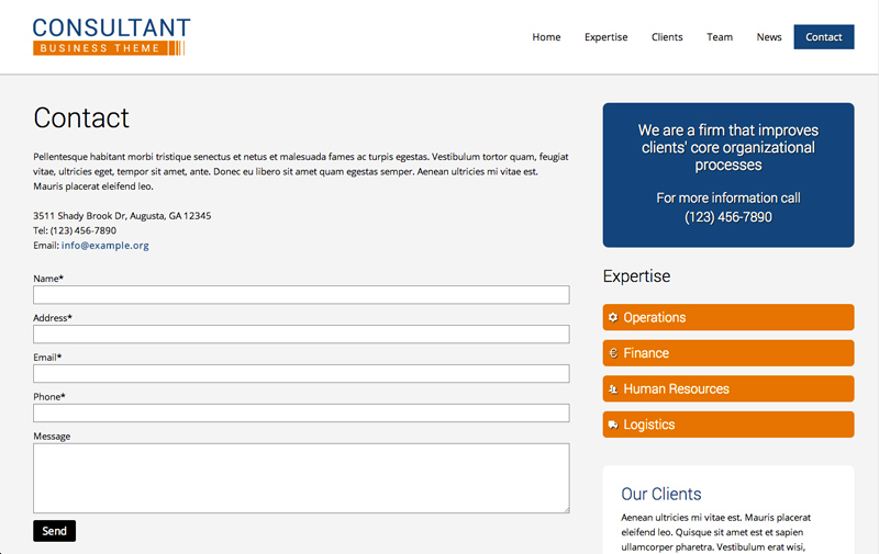 Consultant WordPress Theme - Contact us page