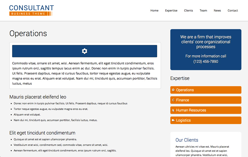 Consultant WordPress Theme - Service pages