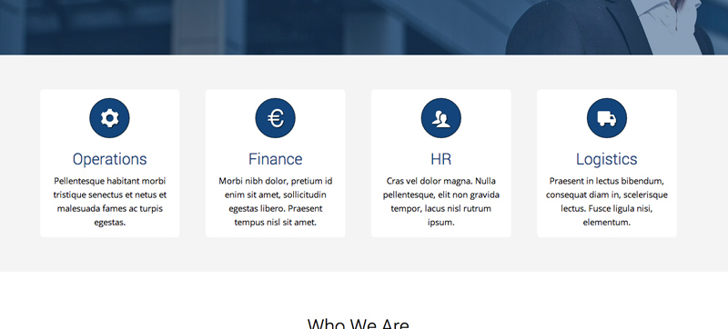 Consultant WordPress Theme - Services feature