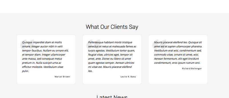 Consultant WordPress Theme - Reviews section