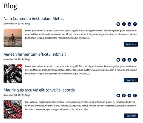 Cycling Club WordPress Theme - News section