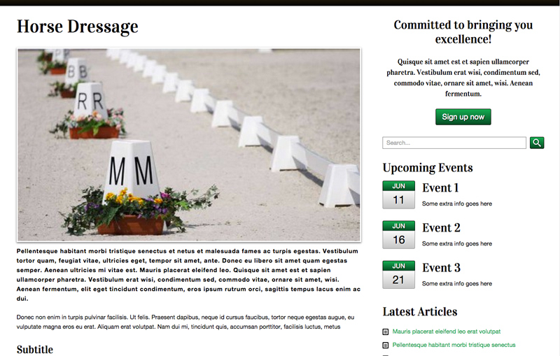 Equestrian WordPress Theme - Attractive service pages
