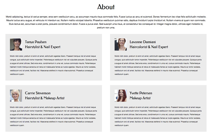 Hair Stylist WordPress Theme - Introduce your company