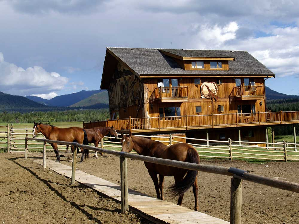 Horse Ranch WordPress Theme - Made for resort managers