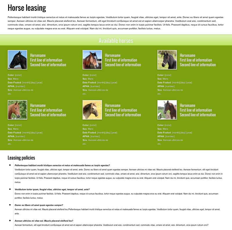 Horse Riding WordPress Theme - Clean service overview