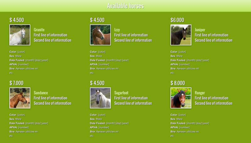 Horse Riding WordPress Theme - Your services online