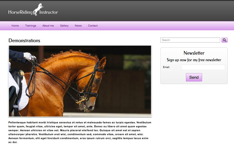 Horse Riding Instructor WordPress Theme - Beautiful service details