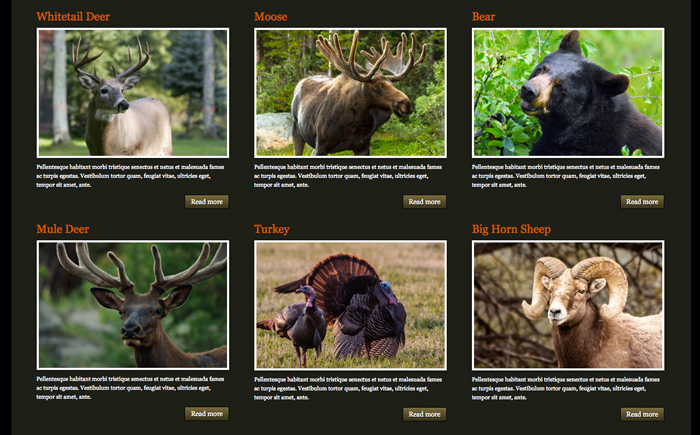 Hunting Outfitters WordPress Theme - Overview of services