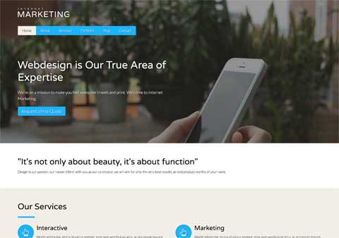 Internet Marketing WordPress Theme - Slick design