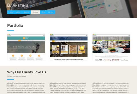 Internet Marketing WordPress Theme - Project portfolio