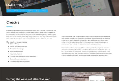 Internet Marketing WordPress Theme - Service details