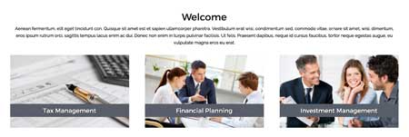 Investment Manager WordPress Theme - Overview of services