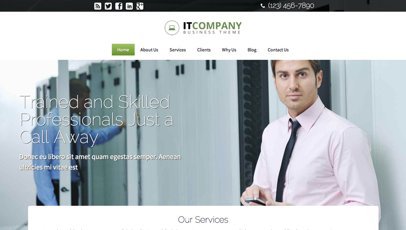 IT Company WordPress Theme - Full-page slider