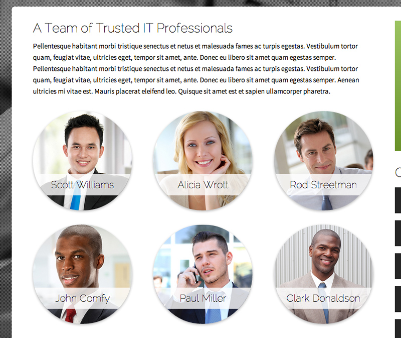 IT Company WordPress Theme - Staff bio page