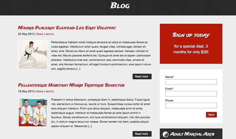 Karate WordPress Theme - Authority blog