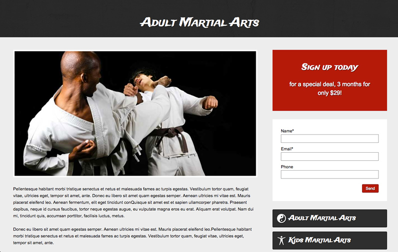 Karate WordPress Theme - Service details