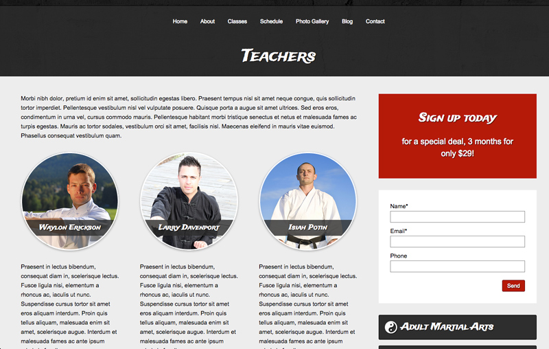 Karate WordPress Theme - Stylish biography page