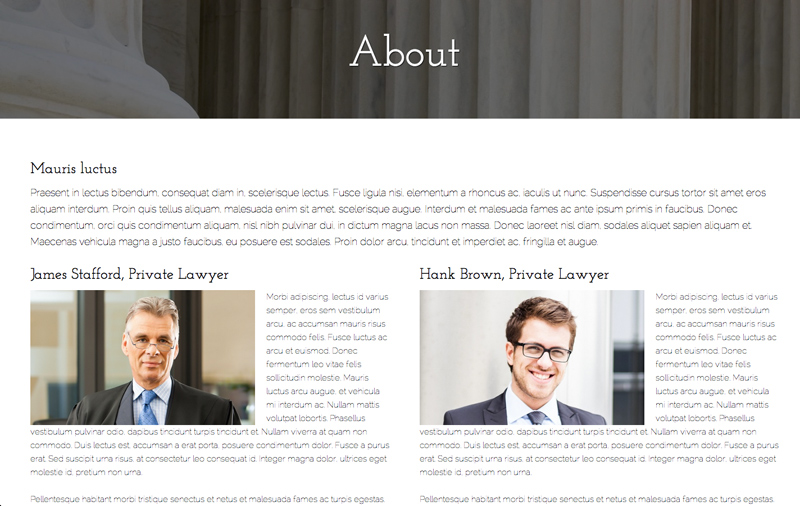 Law Office WordPress Theme - Team overview