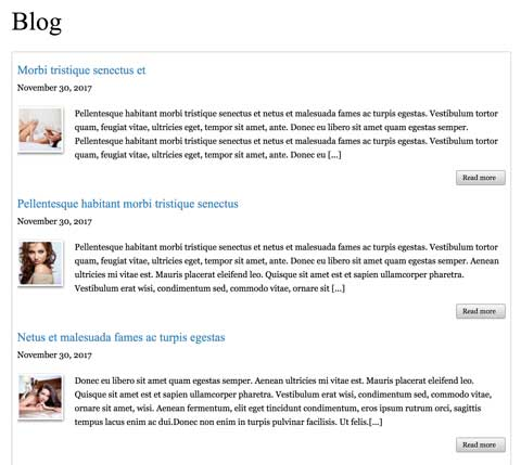 Visagiste WordPress Thema - Een goed blog thema