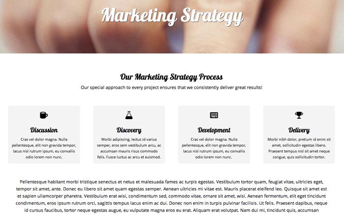 Marketing Agency WordPress Theme - Detail pages