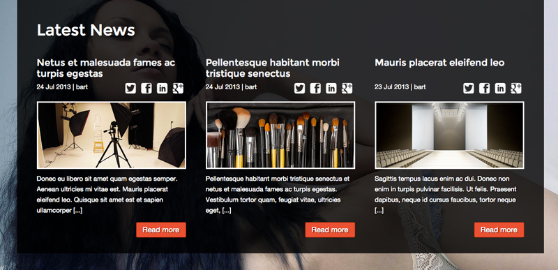 Modellen Portfolio WordPress Thema - Een goed blog thema
