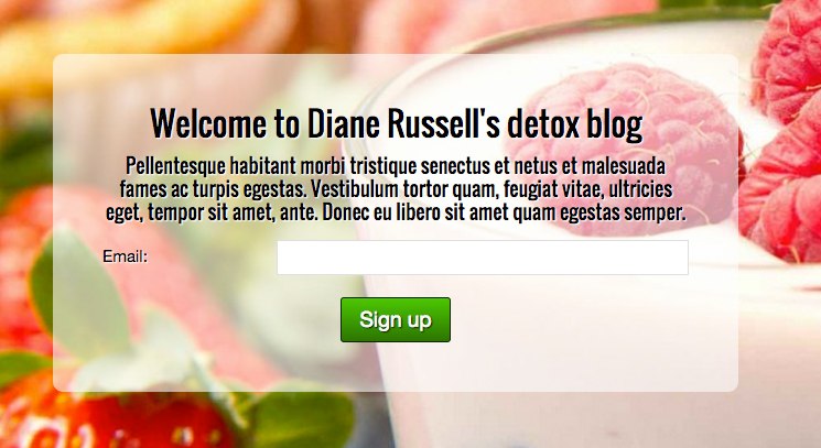 Nutritionist WordPress Theme - Mailing list sign-up