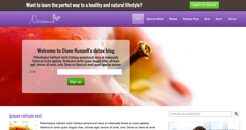 Nutritionist WordPress Theme - Classic photo slider