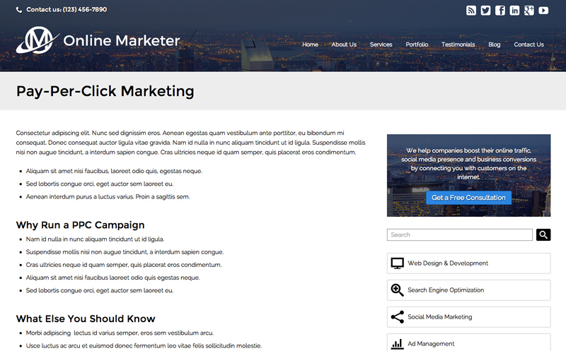 Online Marketer WordPress Theme - Detailed service pages