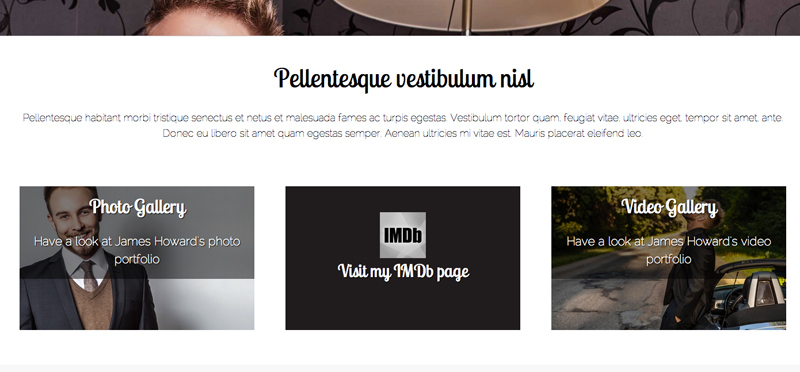 Performer WordPress Thema - Project portfolio