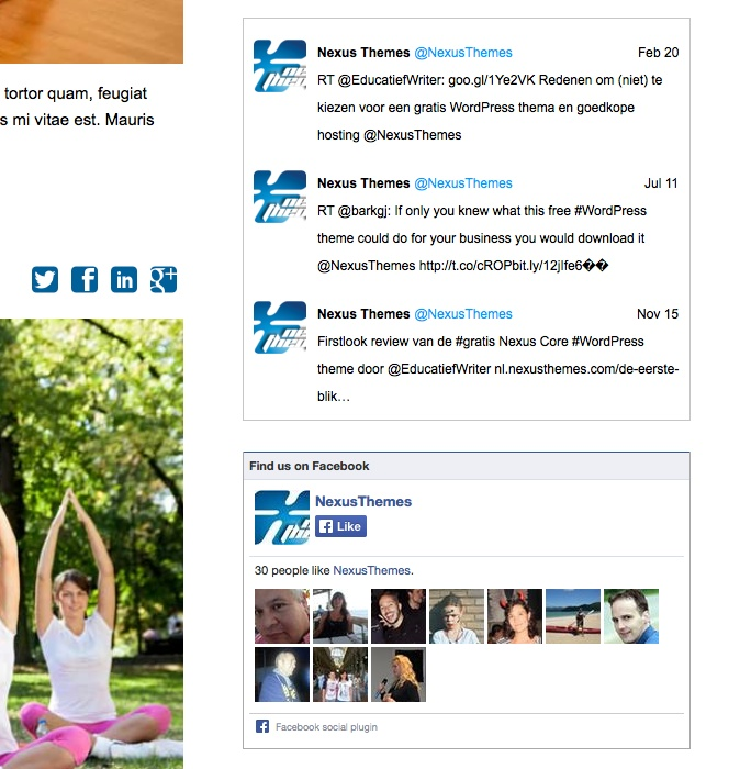Personal Trainer WordPress Theme - Social media integration