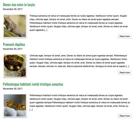 Pest Control WordPress Theme - News blog included