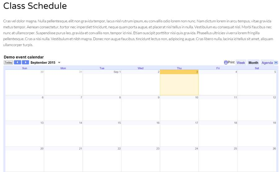 Pilates WordPress Theme - Google calendar