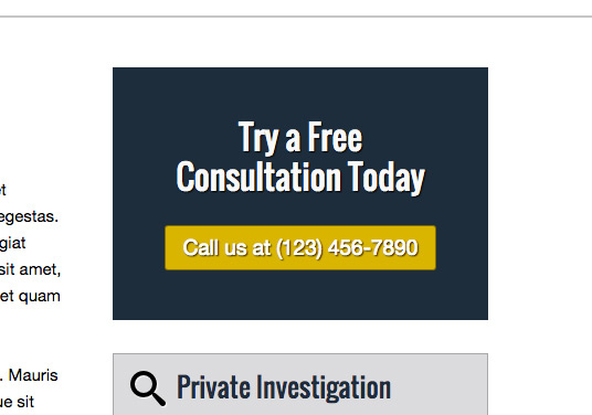 Private Investigator WordPress Theme - Great call-to-actions