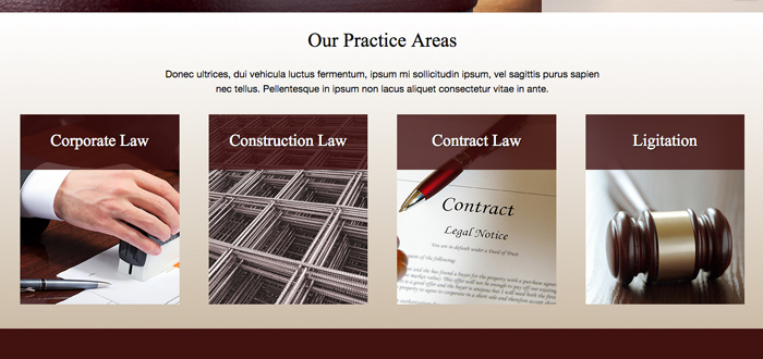 Private Lawyer WordPress Theme - Highlighted services