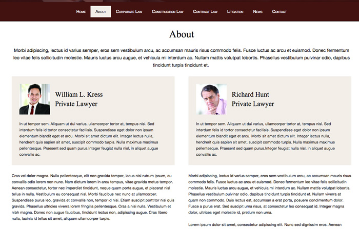 Private Lawyer WordPress Theme - lawyers overview