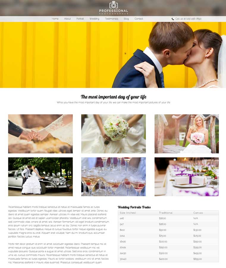 Professional Photographer WordPress Theme - Accesible, professional design