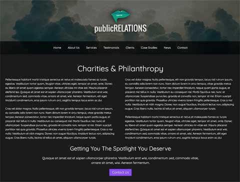 Public Relations WordPress Theme - Beautiful service details