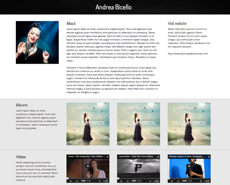 Record Label WordPress Theme - Detail pages for services