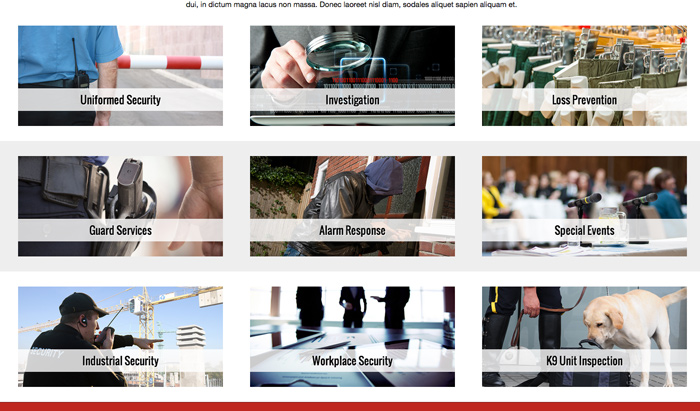 Security Company WordPress Theme - Convenient services overview