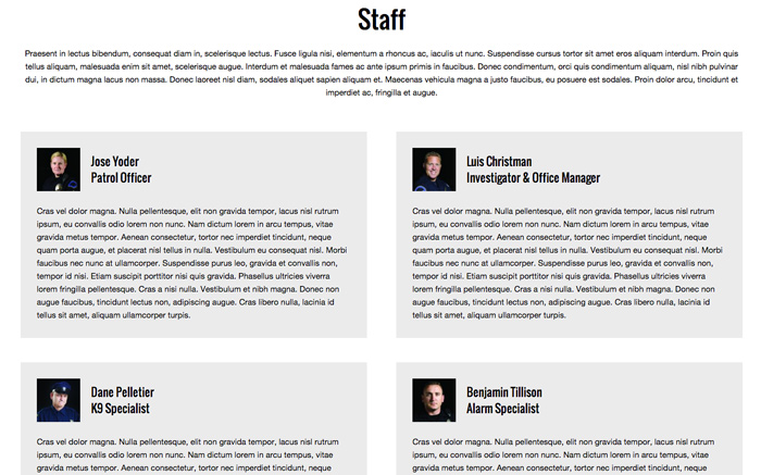 Security Company WordPress Theme - Introduce your business