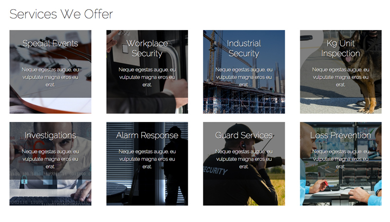 Security Services WordPress Theme - Service overview